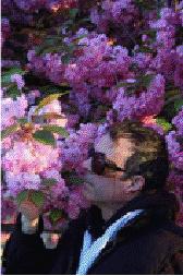 spring_time_in_paris_david_d_downie