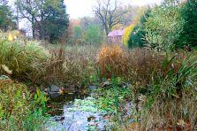 Riverdog-pond-barn