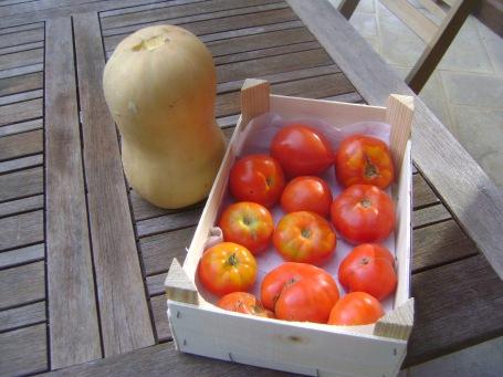Tomatos&Squash.jpg